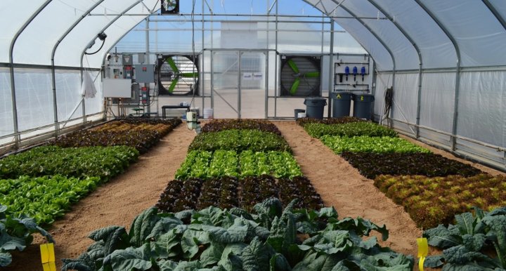 UA-CEAC Off Grid Greenhouse